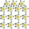 Fleurs en papier 15 maguerites Embellissement