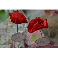 """Papier de Soie Assortiment de couleurs """"Rouge Coquelicot""""  50 cm x 70 cm (5 feuilles)"""