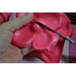 Paire de Ciseaux de Précision en acier Inox, qualité supérieure