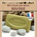 Moule mini pour fabrication savon artisanal avec écriture Bienvenue