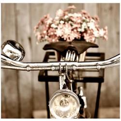 Image 3 D  Sépia Retro Vélo - 30 x 30 cm (vendue à l'unité) pour tableau selon technique du 3D