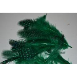 Plumes Vertes de Pintade, 3 gr,  taille aléatoire de 3 à 8 cm environ