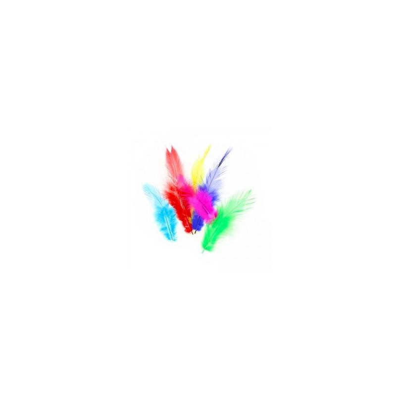 Plumes  de Coq assortiment de couleurs, 5 gr,  taille aléatoire de 3 à 15 cm environ