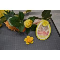 Pinceaux embout mousse lot 4, assortiment Ø 1.3 cm, Ø 2 cm, Ø 2.5 cm, Ø 3.5 cm