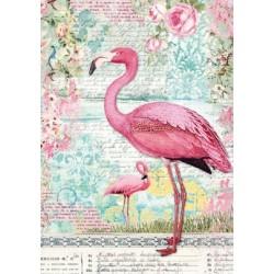 Papier feuille de riz, imprimé flamand rose, vendue à l'unité, planche de motifs, format A4