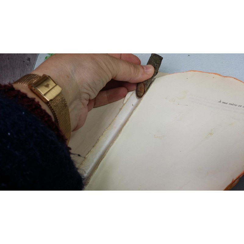 Tiges de Bouleau Naturel, 15 cm, épaisseur : env.   Ø 1 à 3.5 cm  (sachet de 250 gr)