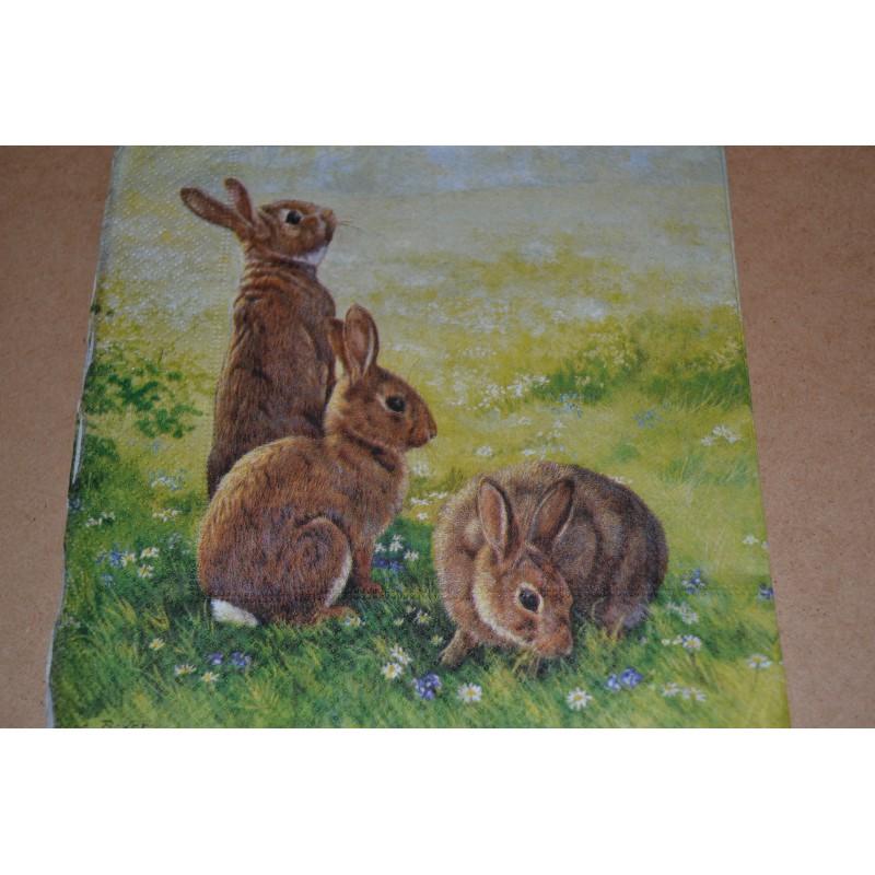 Serviette en papier : lapins (vendue à l'unité)
