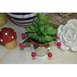 Perles en bois en sachet Rose Vif  14 mm (sachet 20 pièces)