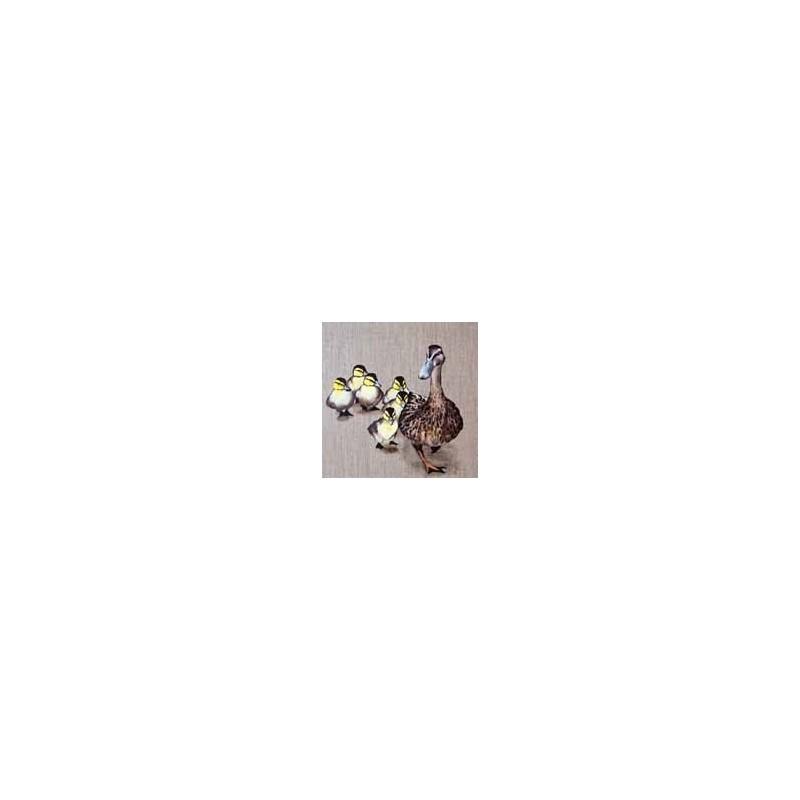 Image 3 D   Image de la Ferme : Canard 30 cm x 30 cm, Tableau à réaliser avec la Technique du 3D