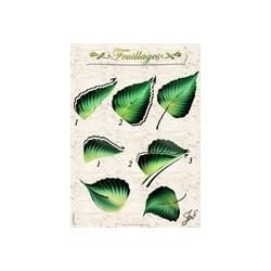 Fiche Entraînement Plastifiée Réutilisable à l'infini  motifs Feuilles,  Imprimé détails Recto et Verso