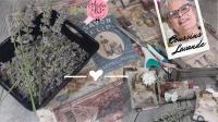 BLOC NOTES : FICHES PRODUITS  pour  CONFECTIONNER DES MINI COUSSINS de LAVANDE effet vintage Carte postale ou étiquettes Anciennes,   TUTORIEL